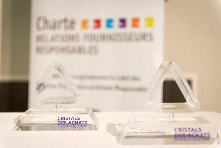 "CRISTALS DES ACHATS"" PURCHASING AWARDS: THREE PRIZES FOR JVGROUP"